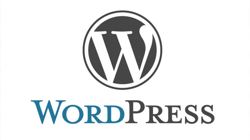Bodrum Web Tasarım Wordpress Geliştirme